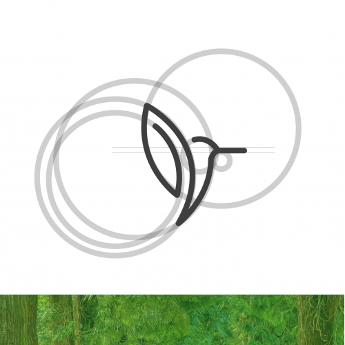 Green bird adventures minimal logo