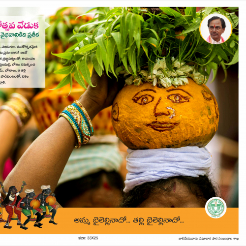 Govt of Telangana News Paper ad