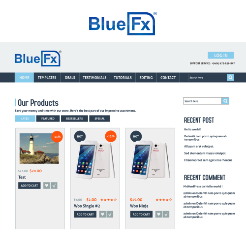 Web Page Design from Blue Fx