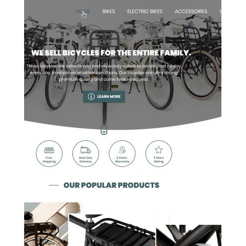 Bike Store Website