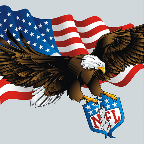 NFL Eagle Illustration