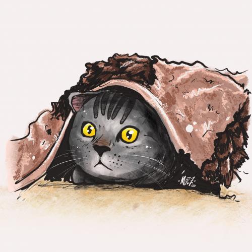 Kitten - Pets Illustration