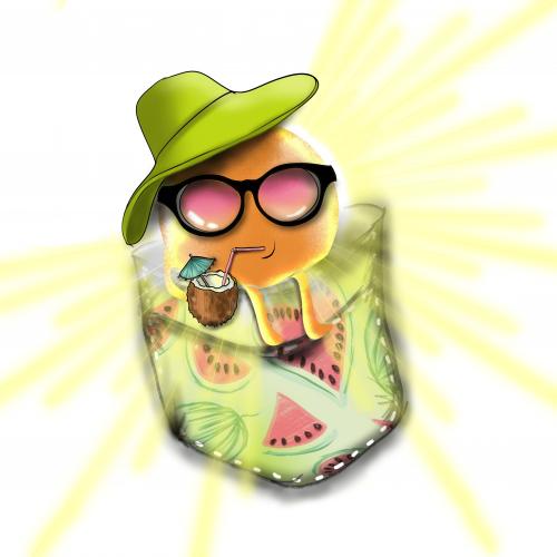 SUNSHINE IN A POCKET