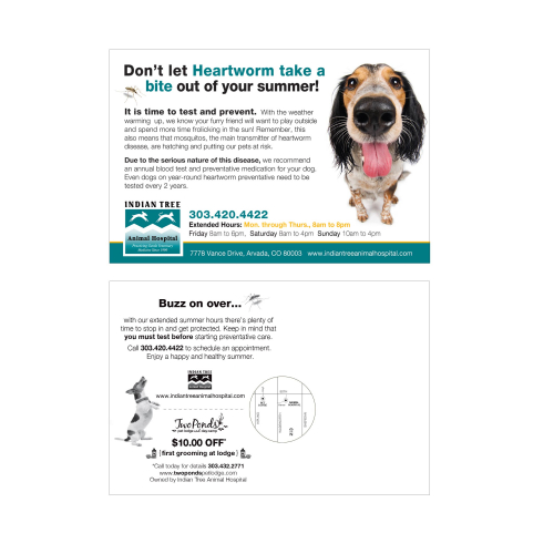 Heartworm Protection Postcard