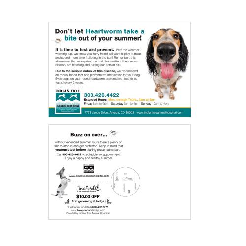 Heartworm Protection Postcard