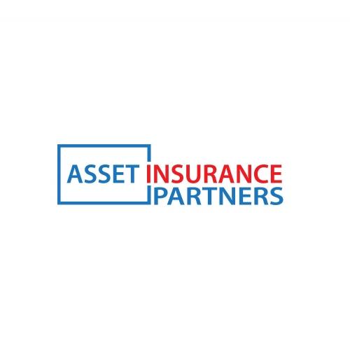 Asset Insurance Partners