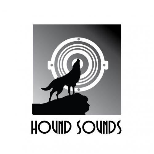 Unused logo design proposal for speaker company