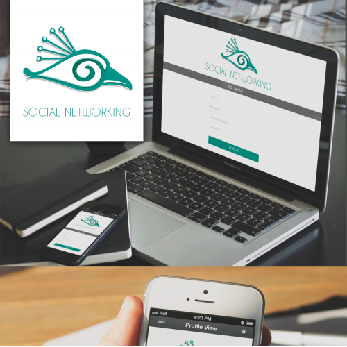 Social Networking Theme