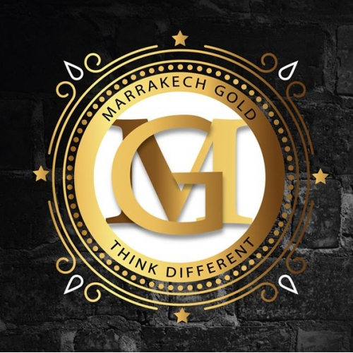I will design 3 PROFESSONAL logo with in 24 hrs