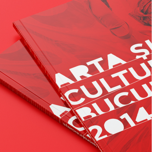 Annual report for ARCUB