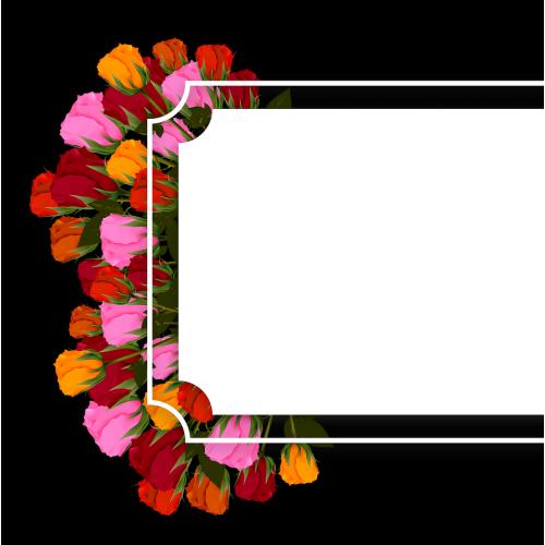 Banner, Flower, Flowers  Roses Multi Color BrightBann