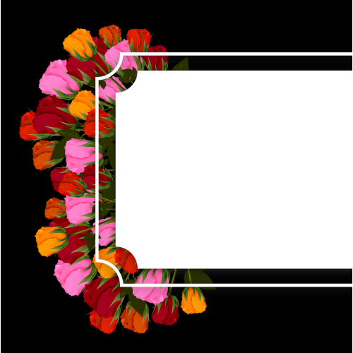 Banner, Flower, Flowers  Roses Multi Color BrightBann