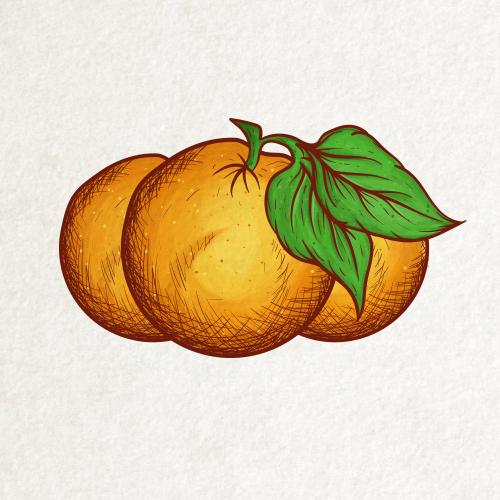 Vintage Orange Logo Design