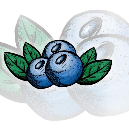 Blue Berry Logo