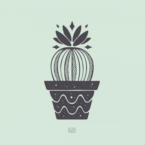 Stellar Cactus
