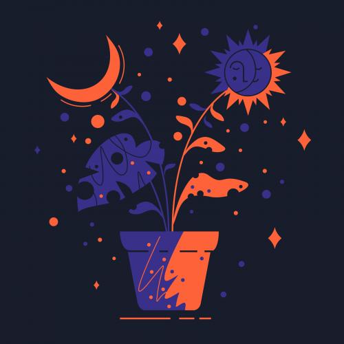 astroflower