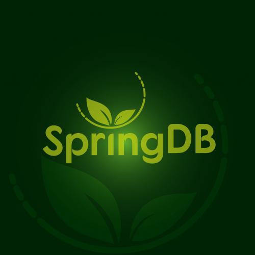 spring data base