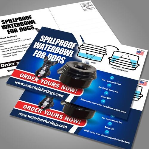 Pet product leaflet