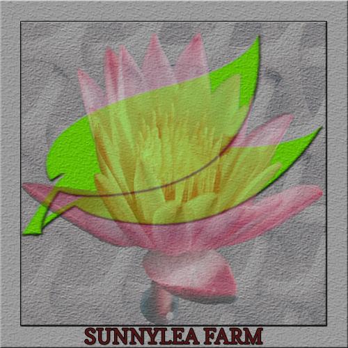 FLOWER FARM LOGO