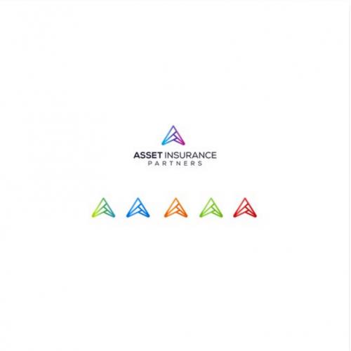 asset insurance logo