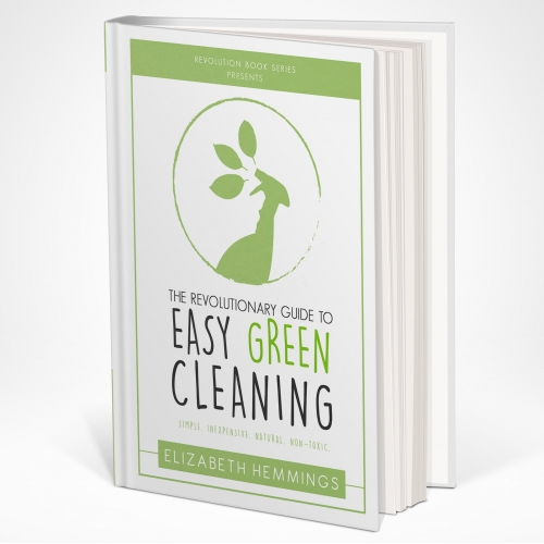 Book Cover for Eco Cleaning