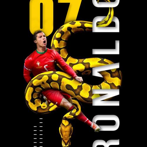 Stunnig Ronaldo