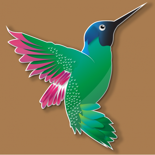 Hummingbird background illustration