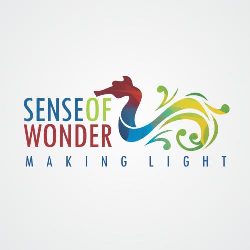 Sense of wonder Logo Design