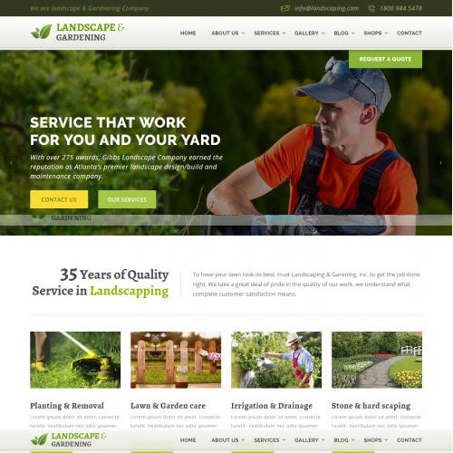 My web design template