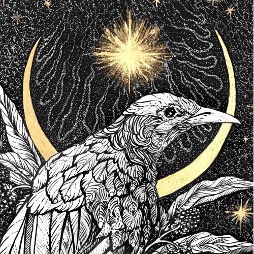 Moonlight Bird