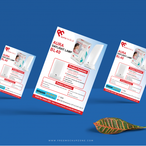 Professional flyer Design For Canada Client