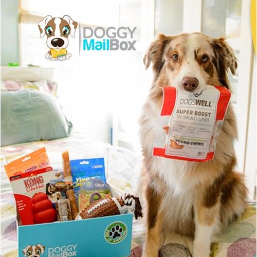 doggyMailBox