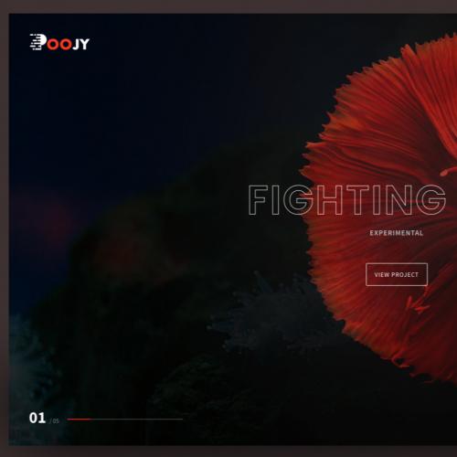 Poojy - Custom HTML Template