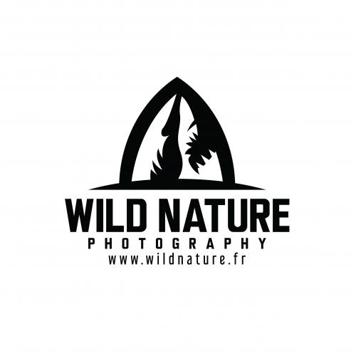 Wild Nature Photography