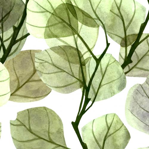 Transparent green foliage