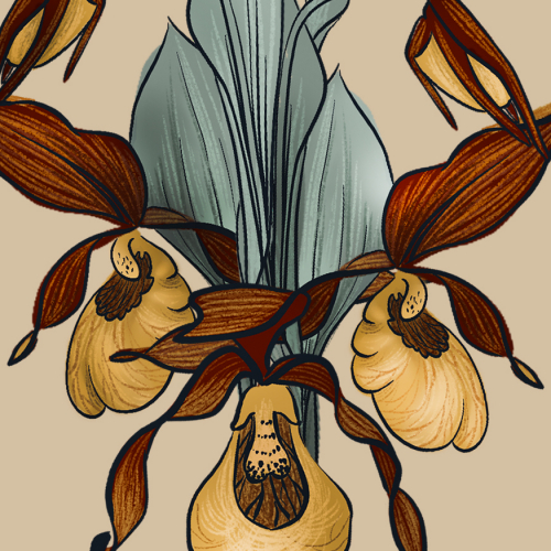 Venus flytrap on buttercream