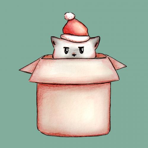 Christmas santa cat in a box