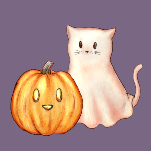 Halloween spoopy ghost cat and pumpkin