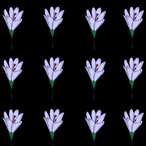 Safran flower pattern