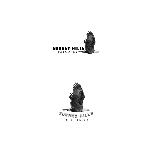 Surrey Hills Falconry Logo