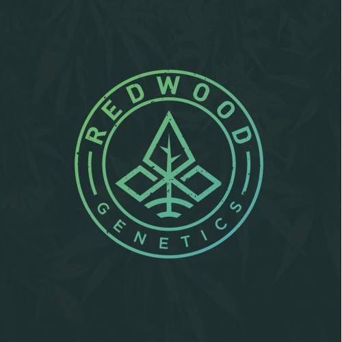 Logo design proposal for Redwood Genetics