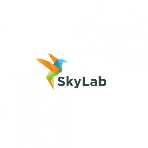 Logo for Sky lab