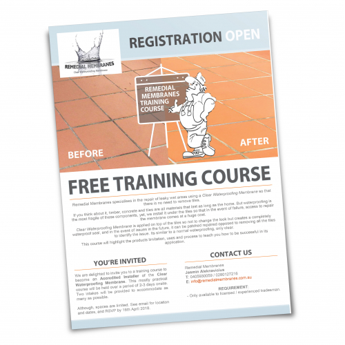 Flyer Design for Training Seminar
