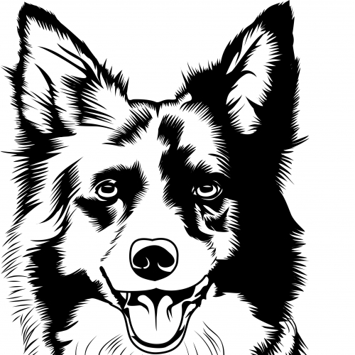 Turn your image into line art