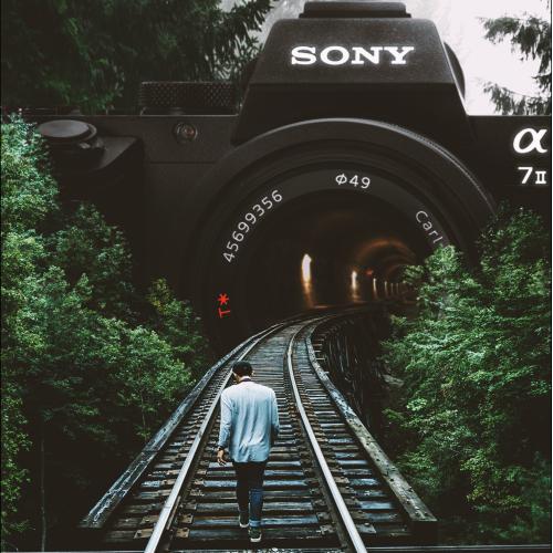 World of Photos (Catch the Dream)