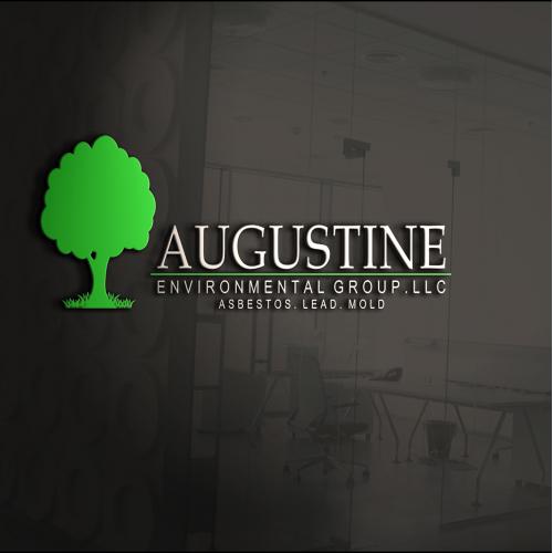 AUGUSTINE REVISI 1