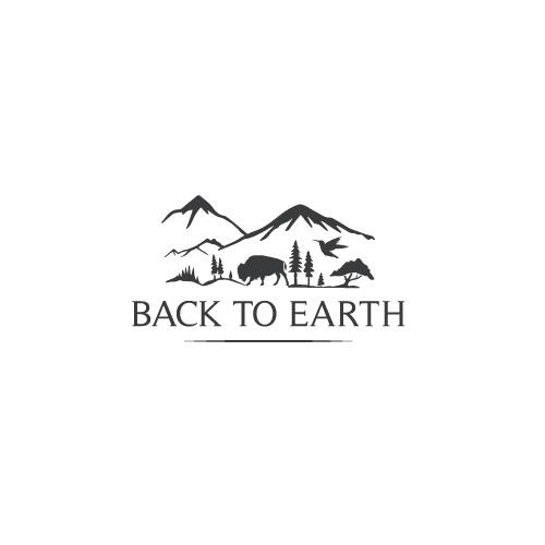 Back-to-Earth-7.jpg
