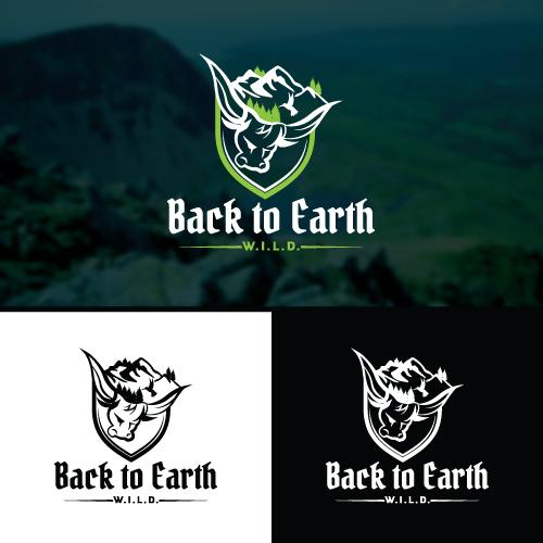 Back-to-Earth 1.jpg