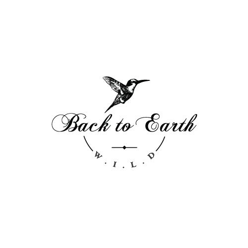 Back-to-Earth-2.jpg