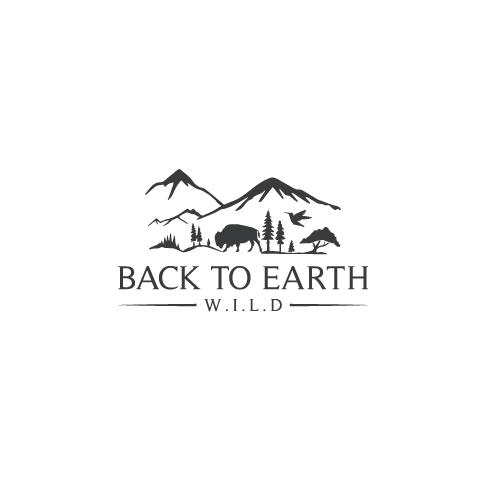 Back-to-Earth.jpg